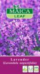 Benih Lavender (Lavandula angustifolia) 25 Biji