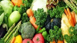 13 in 1 Paket Benih Sayuran yang Paling Murah