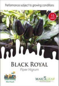 Benih Biji Cabai Gagak Black Royal 15 Butir